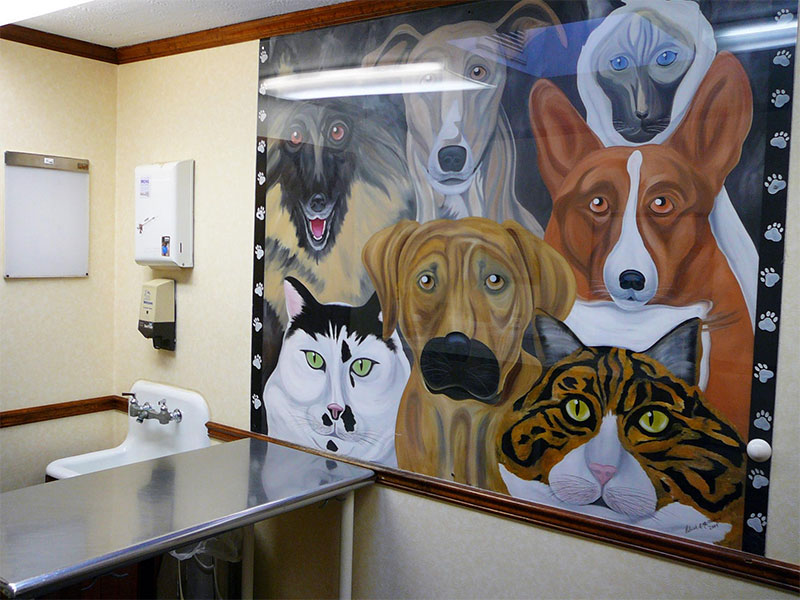 Amsterdam NY veterinary hospital